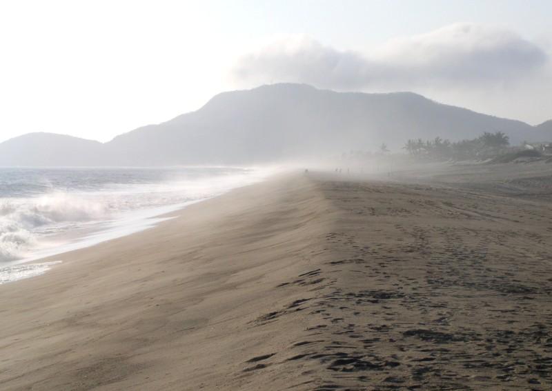 Playa De Cocos