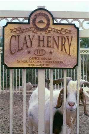 Image result for clay henry